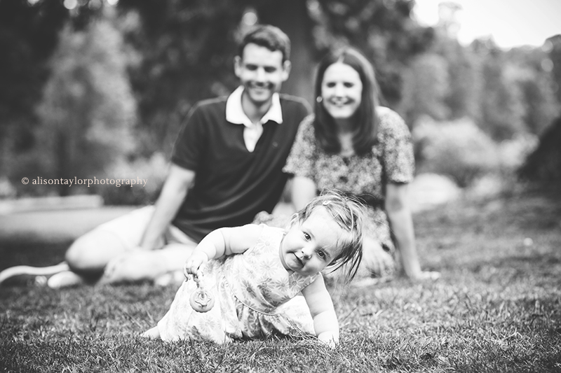 little girl looking crawling during a one year old photo shoot