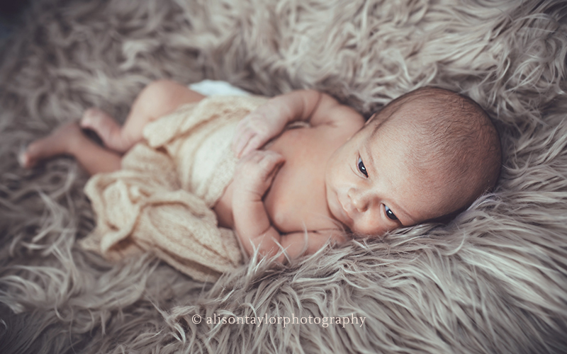 baby lying on furry rug during a photo shoot